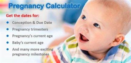 best pregnancy due date calculator